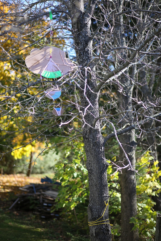 Expérimentations menées en nature par Kate Lepper en résidence